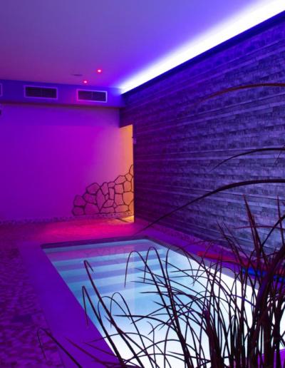 piscine-verticale-dreams